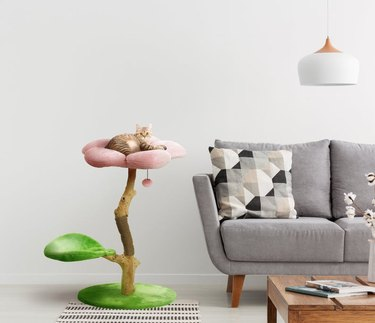 floral cat tree with cat next to gray couch and coffee table