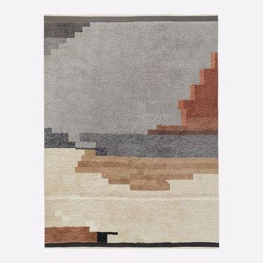 multicolored shag rug