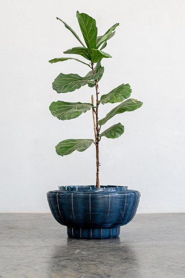 blue recycled PVC basket/planter with plant