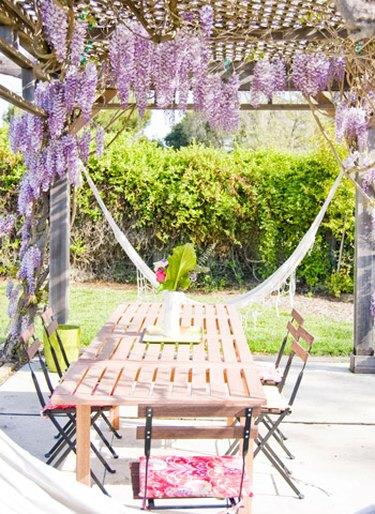 wisteria covered trellis over patio