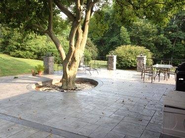 A concrete patio with a circular cutout for a tree