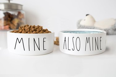 """""""Mine"""" and """"also mine"""" food and water pet bowls"""