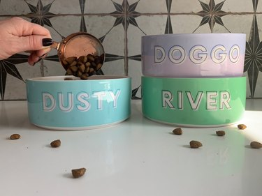 Custom pet food bowls