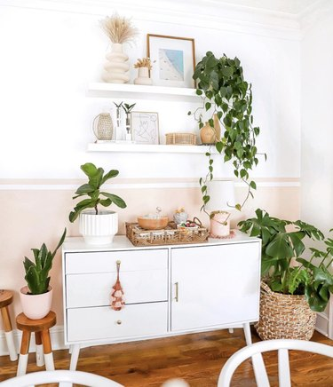 Pink accent wall with white floating shelves, hanging plants and white cabinet.