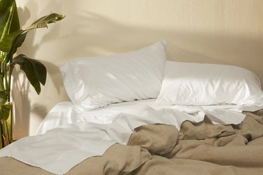 Unmade bed with plant in corner