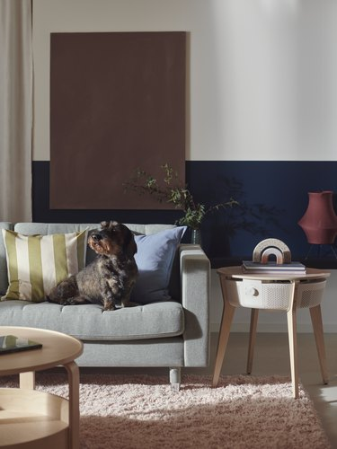 living room space with couch and dog and air purifier hidden in a table on the side