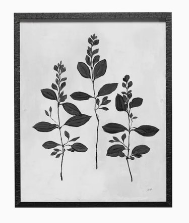 Botanical Study in Black Frame