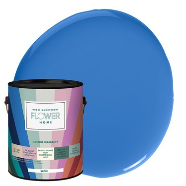 Flower Home Paint in Bold Blue