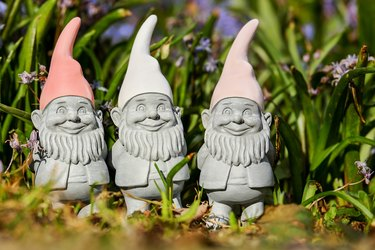 Why Do People Put Gnomes in Gardens?