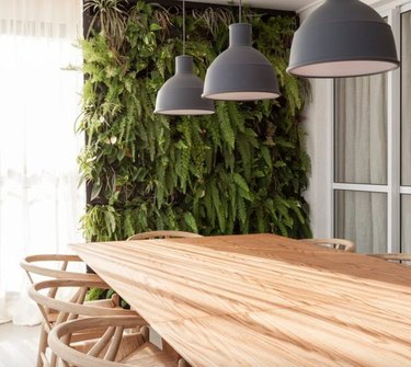 Dining room with black pendants, wood table, vertical garden.