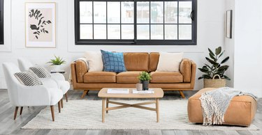 best couches for pets