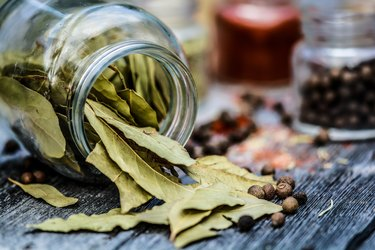 Why Do People Put Bay Leaves in Pantries?