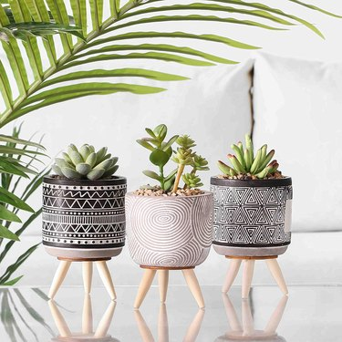 Trio of fake succulents in black and white geometric planters with long wood legs