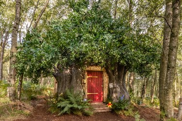 treehouse cabin with red door