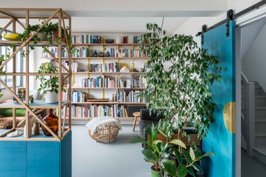 Living room area with shelves and bookshelves, with bright blue barn door and plant