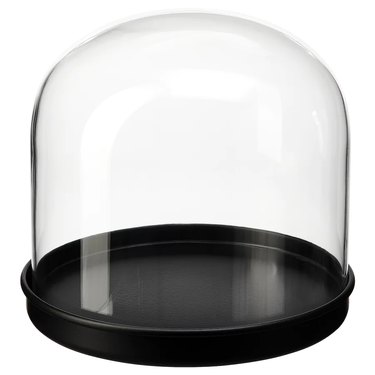 glass dome with black base
