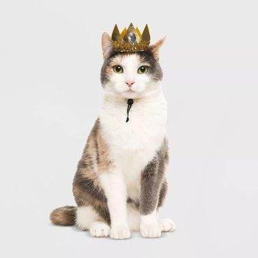 Hyde & EEK! Boutique Royal Crown Cat Costume
