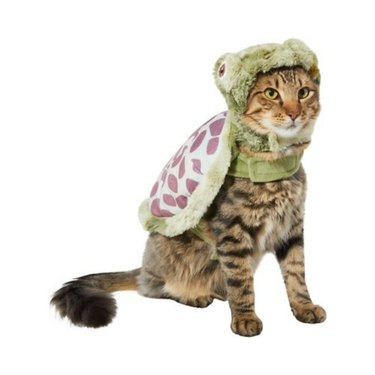 Frisco Sea Turtle Dog and Cat Costume