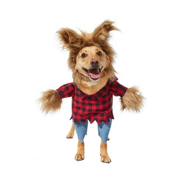 Frisco Front Walking Werewolf Dog and Cat Costume