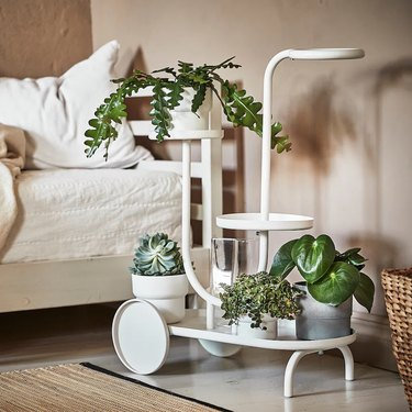 Chilistrån Plant Stand With Wheels