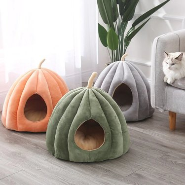 My Vin Chester Pumpkin Pet Bed