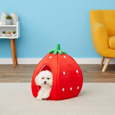 YML Strawberry Covered Cat and Dog Bed
