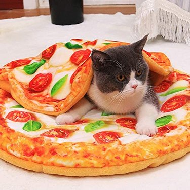 Fld Pizza Pet Bed and Blanket