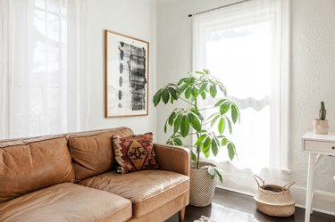 Bright living room with a dark wood floor. A brown leather sofa with a traditional pillow, abstract art, a tree plant, and a basket.
