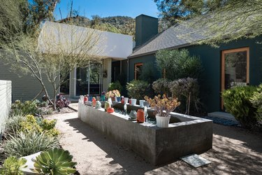A garden box with plants in planters. Succulents and plants lining walkways, of a house.