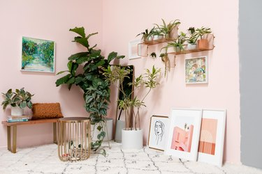 plants and paintings in front of a pink wall
