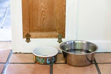 dog bowls on tile floor