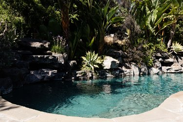 An in-ground swimming pool surrounded by plants and rocks