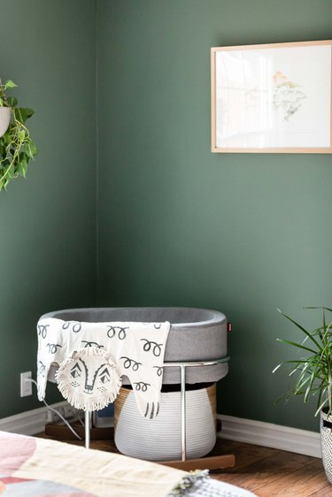 A green-walled minimalist nursery with plants and a gray bassinet