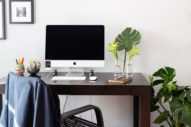 home office desk with computer and monstera plant