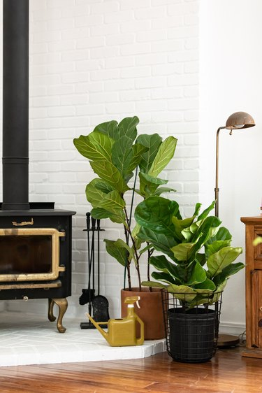 industrial farmhouse black antique stove with potted plants and industrial lamp on wood floor