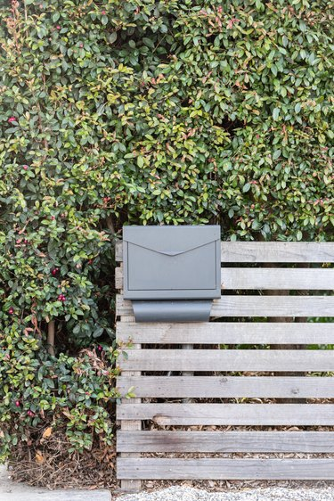 Wood fence with a gray mailbox attached to it and a bush