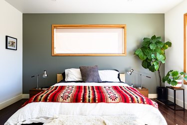 A bedroom with a large plant, wood framed windows and white-green walls