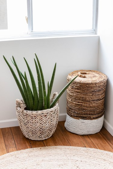 An aloe plant in a basket on a wood floor with a fiber rug