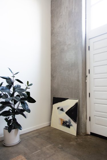 home entry way with rubber plant in white pot