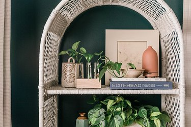 The Best Places to Shop for Plants Online