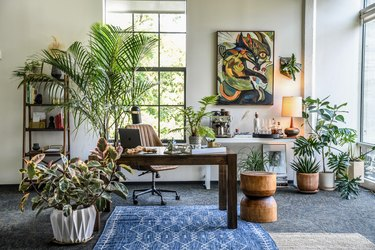 bohemian home office filled with plants