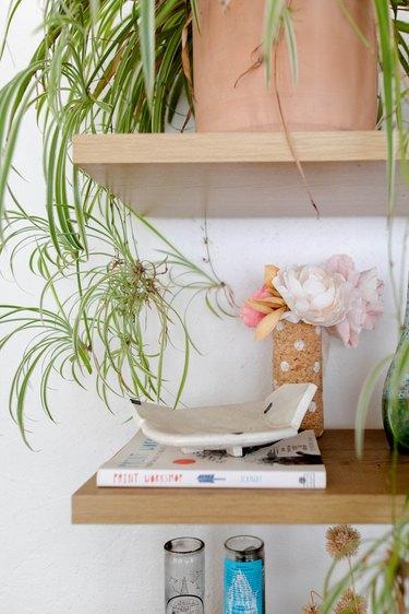 Plants on wood shelves