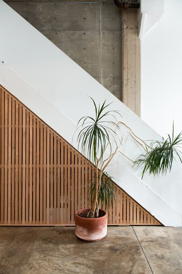 Wood and white staircase with palm plants