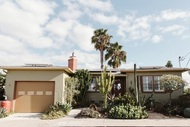 mid-century home with palm trees, minimalist flower bed with cactus and other green plants