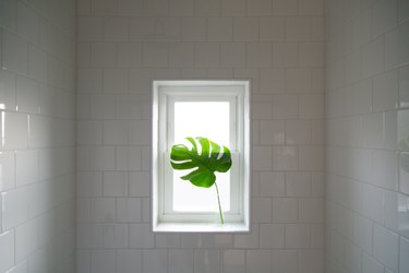 Shower subway tile wall with window and monstera leaf
