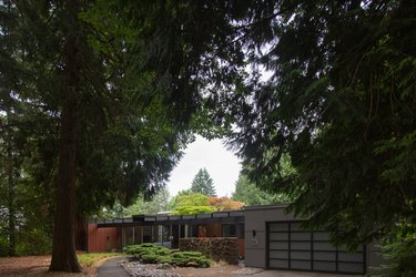 A mid-century gray ranch house with a flat roof, tall trees and hedges in the front landscaping