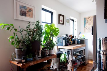 A wood side table with houseplants. A small kitchen storage with a wood counter and appliances. Eclectic wall art.