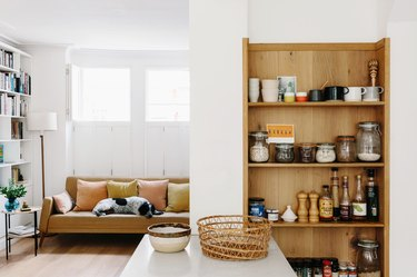 White-walled living room with wooden shelving unit with pantry ingredients, tan leather couch, bookshelf, lamp, and dog