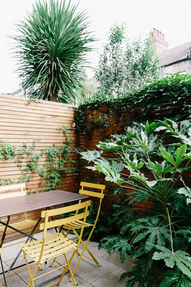 Outdoor patio with wood fencing, simple table and chairs, green plants, and palm tree
