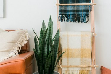 Wood ladder with plaid blankets with plant and leather sofa